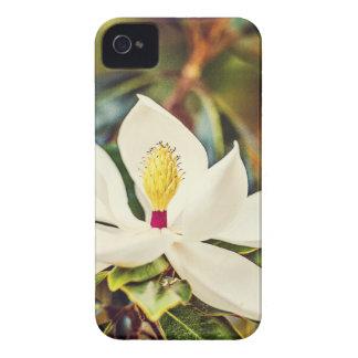 De schitterende Magnolia van de Mississippi iPhone 4 Hoesje