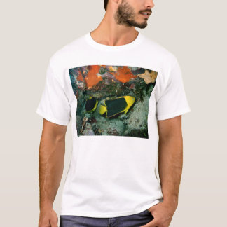 De Schoonheden van de rots T Shirt