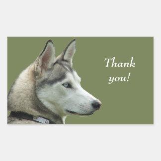 De schor Siberische hondfoto dankt u stickers