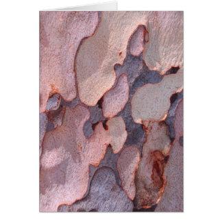 De Schors van de eucalyptus Wenskaart