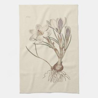 De Schotse Botanische Illustratie van de Krokus Theedoek