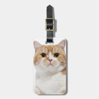 De Schotse Kat van Vouwen Bagagelabel
