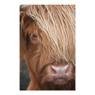 De Schotse Koeien van het Hoogland - Schotland Briefpapier