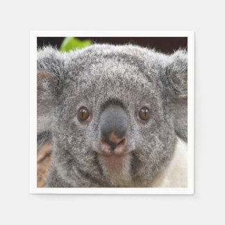 De Servetten van de koala Papieren Servetten