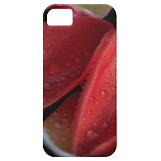 De Sintels van de tulp Barely There iPhone 5 Hoesje