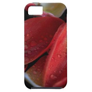 De Sintels van de tulp Tough iPhone 5 Hoesje