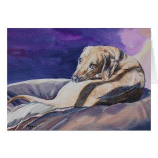 De Slaap van de hond in Zon Notecard Kaart