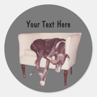 De Slaap van de windhond in Sticker van de Hond