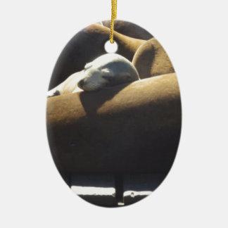 De Slaap van de Zeeleeuw van het baby Keramisch Ovaal Ornament
