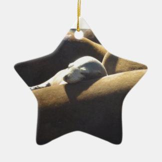 De Slaap van de Zeeleeuw van het baby Keramisch Ster Ornament