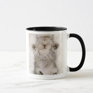 De Slaap van het katje op een Wit Pluizig Hoog Mok