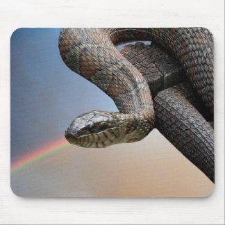 De slang en de regenboog muismatten