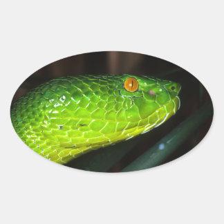 De slang van de de kuiladder van groene Stejneger Ovaalvormige Stickers
