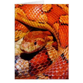 De Slang van het tapijt Wenskaart