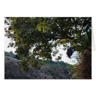 De Slepen van het Park van de Canion van Franklin Kaart