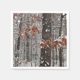 De sneeuw Behandelde Eiken Fotografie van de Wegwerp Servet