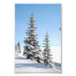 De sneeuw Scène van de Winter met Kerstbomen Foto Kunst