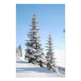 De sneeuw Scène van de Winter met Kerstbomen Foto Afdruk