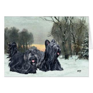 De SneeuwZonsondergang van Terriers van Skye Briefkaarten 0