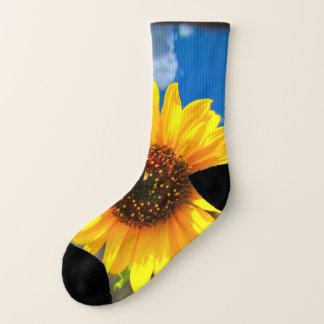 De Sokken van de zonnebloem