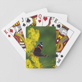 De Speelkaarten van de Vlinder van de