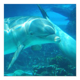 De speelse Uitnodigingen van Dolfijnen