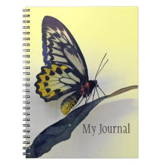 De Spiraal van de vlinder - het verbindende Ringband Notitieboek