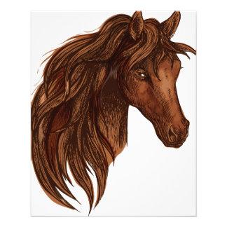 De Sport van het Paard van paarden Folders