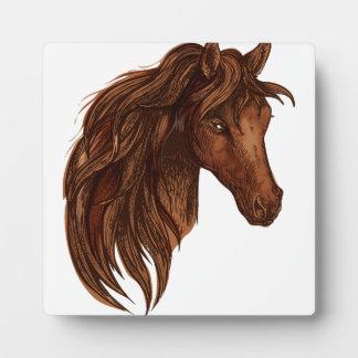 De Sport van het Paard van paarden Fotoplaat