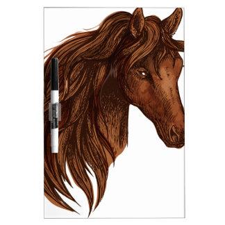 De Sport van het Paard van paarden Whiteboard