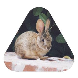 De spreker van het konijn luidspreker