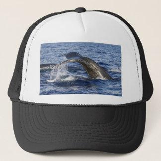 De Staart van de walvis Trucker Pet