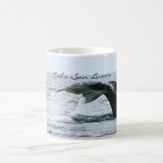 De Staart van de Walvis van de gebochelde, Cabo Koffiemok