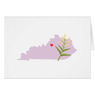 De Staat van Kentucky Kaart