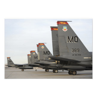 De Staking Eagles van de Luchtmacht van de Foto