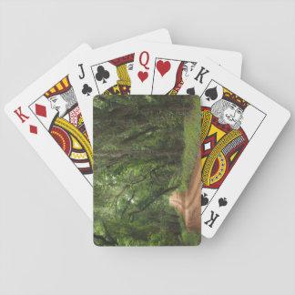 De standaard Weg van de Aanplanting van de Speelkaarten