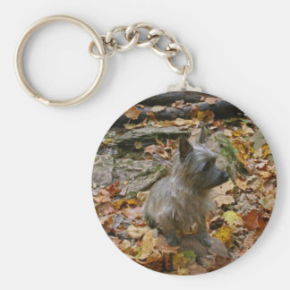 De Steenhoop Keychain van de herfst Sleutelhanger