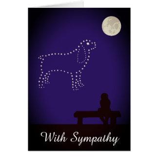 De sterrige Sympathie van de Hond van het Spaniel Briefkaarten 0