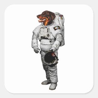 De Sticker van de Astronaut van Beauceron
