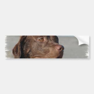 De Sticker van de Bumper van de Labrador van de ch