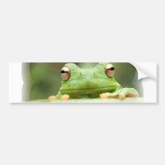 De Sticker van de Bumper van de Ogen van de kikker