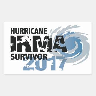 De Sticker van de Bumper van Irma Survivor Florida