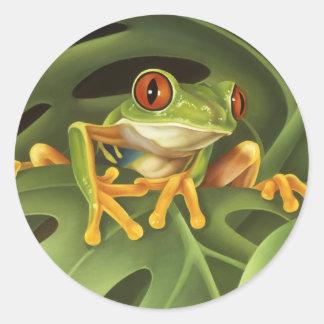 De Sticker van de Kikker van de boom