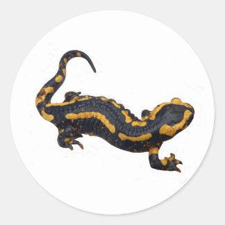 De Sticker van de Salamander van de brand