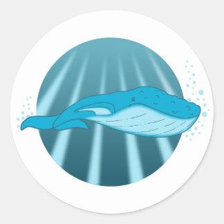 De sticker van de Walvis van de gebochelde
