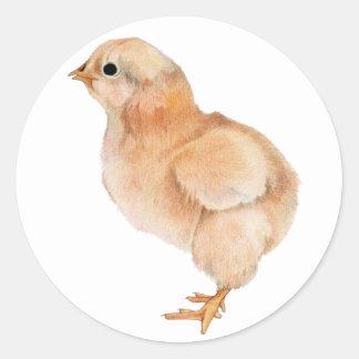 De Sticker van het Kuiken van het baby
