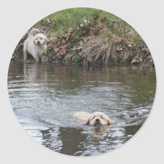 De Sticker van het Puppy van het golden retriever