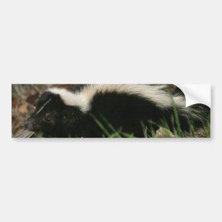 De Stickers van de Bumper van het Gedrag van het s