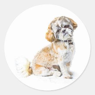 De Stickers van de Hond van Tzu van Shih