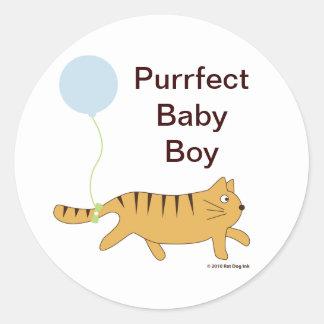 De Stickers van de Jongen van het Baby van